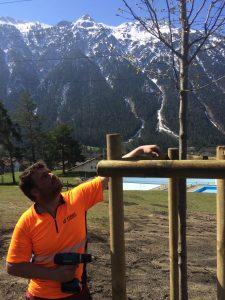 Großbaum Verpflanzungen, Bäume pflanzen, Baum pflanzen, humusieren, Rasen ansähen, Dreibein für Bäume, Bäume pflanzen Vorarlberg