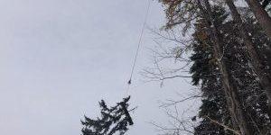 Hubschrauber Holzbringung Leogang